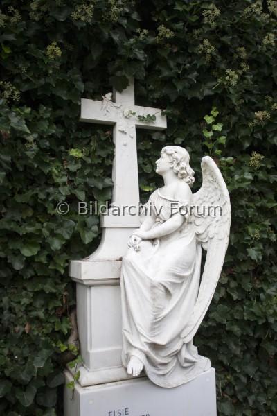 Friedhof Neufeld, Zürich